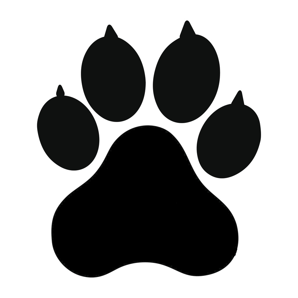 impronta cane