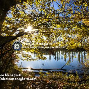 Foto autunno 50x70
